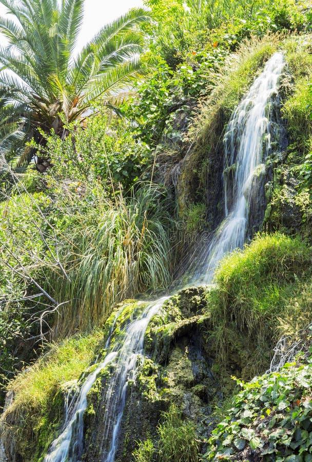 瀑布在凝思庭院里在圣塔蒙尼卡,美国 免版税库存照片