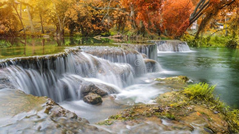瀑布在国家公园的雨林里 免版税图库摄影