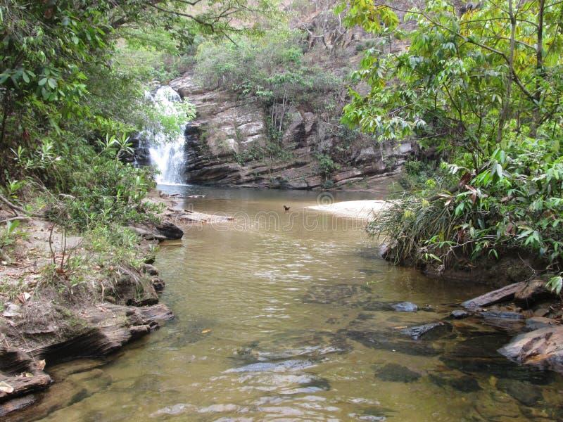 瀑布在山和森林 免版税库存照片