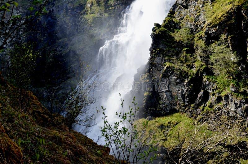 瀑布在挪威 库存照片
