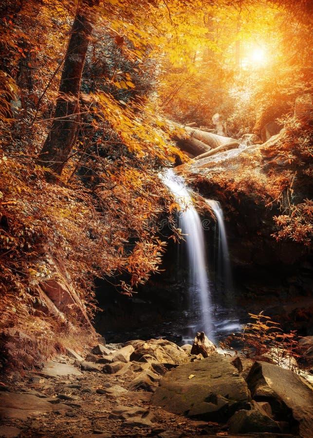 瀑布在有秋天颜色的森林 库存图片