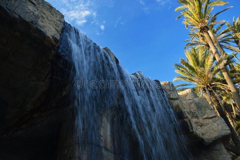 瀑布在棕榈树丛里 库存图片