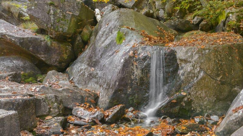 瀑布在森林在秋天 免版税库存照片