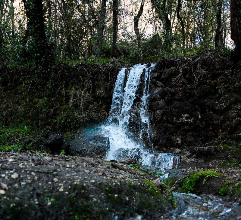 瀑布在森林 库存照片
