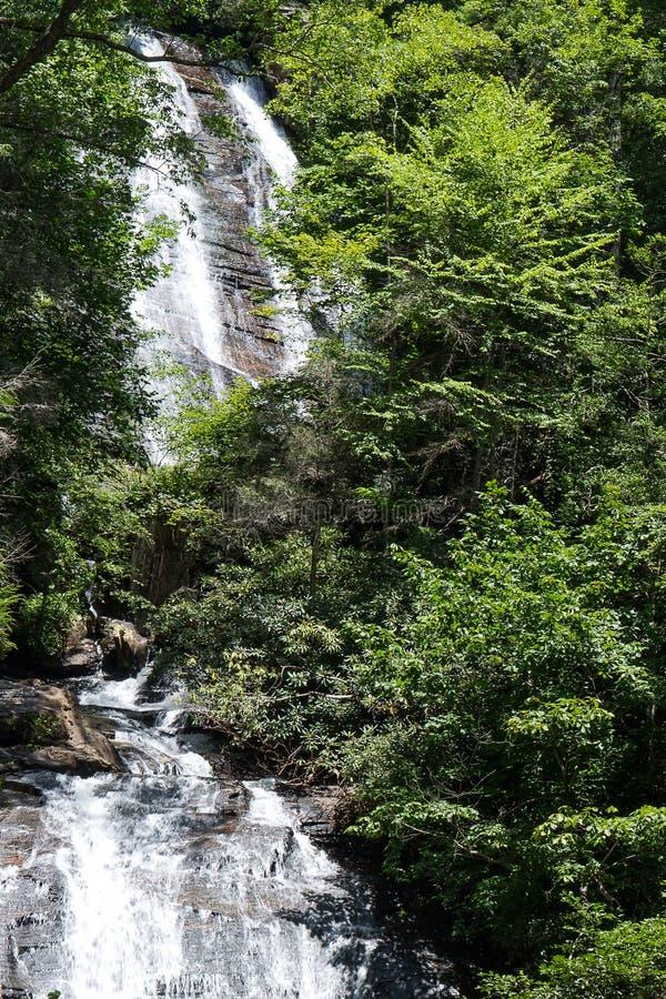 瀑布在森林 库存图片
