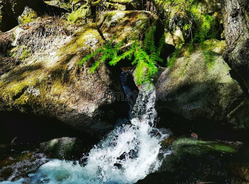 瀑布在芬兰森林里 库存照片