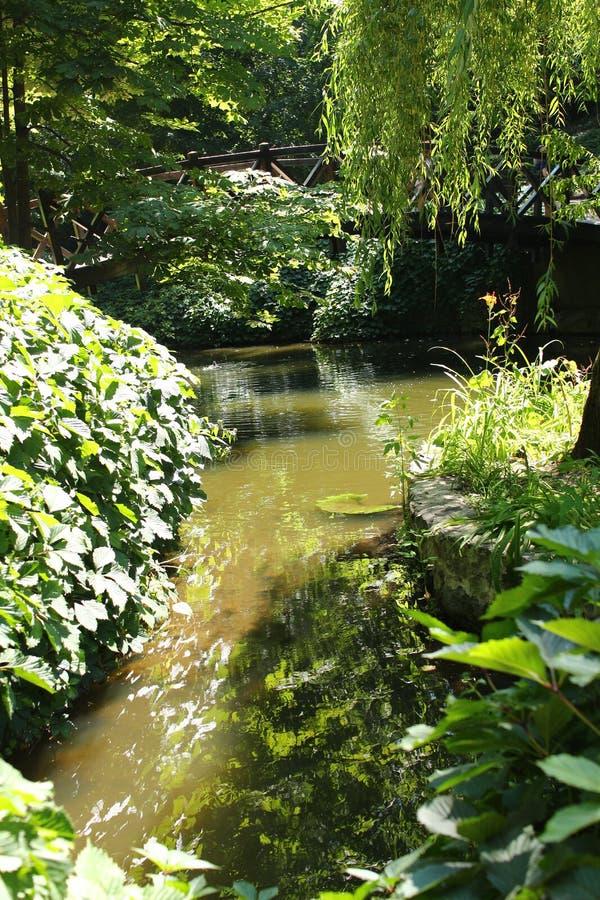 瀑布在Sofiyivsky公园 植物园树木园在乌曼,切尔卡瑟州,乌克兰 免版税库存照片