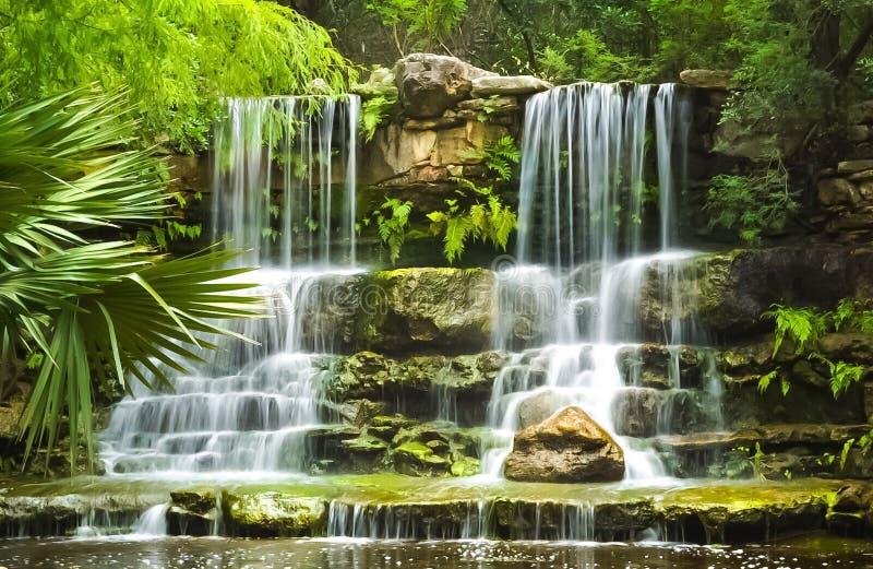 瀑布在Zilker植物园的史前公园在奥斯汀得克萨斯 免版税库存照片