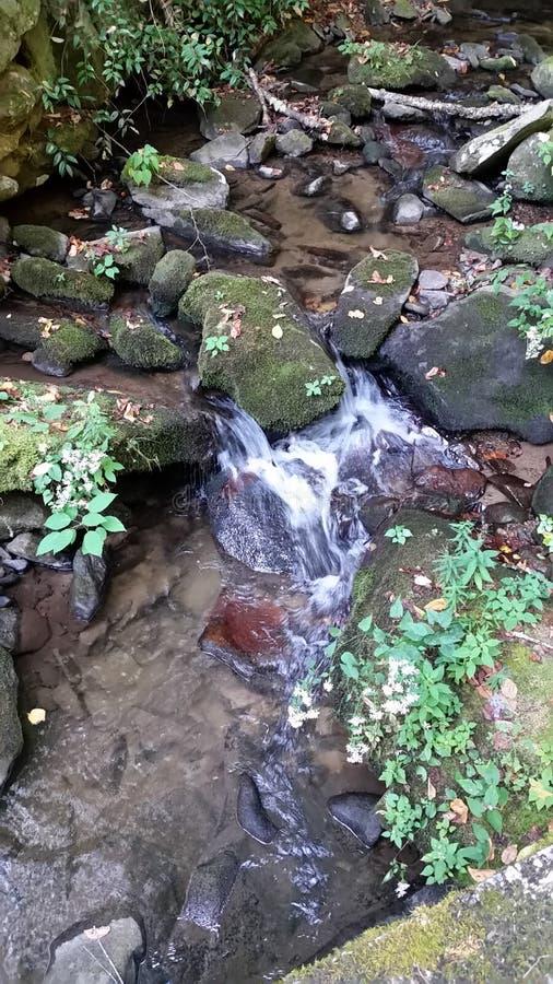 瀑布是小,并且美丽的 库存图片