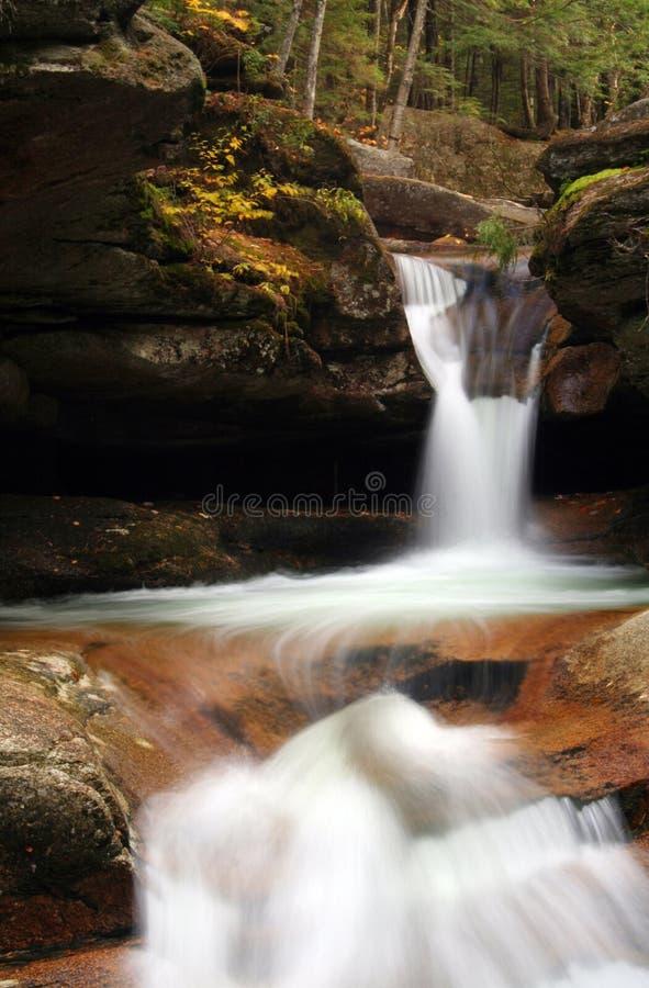 瀑布森林地 库存图片