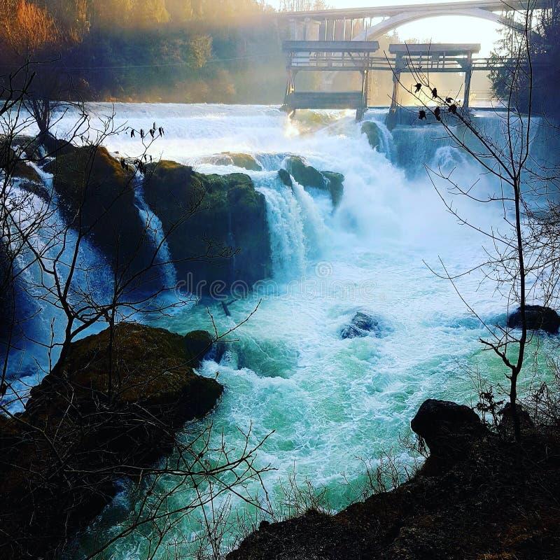 瀑布特劳恩河 库存照片