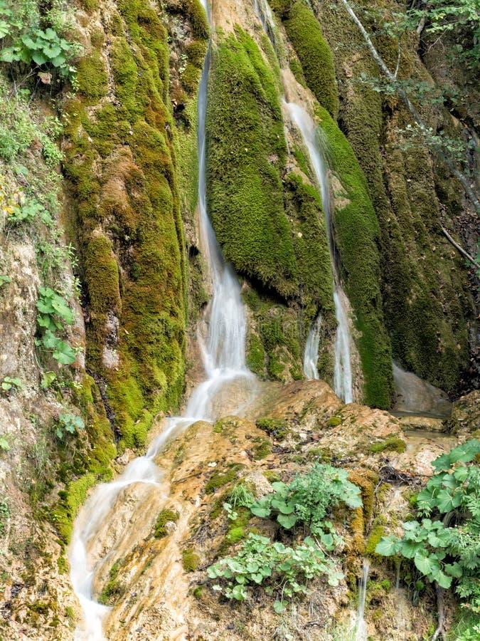 瀑布的美好的风景与绿色青苔的 免版税库存图片