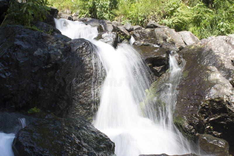 瀑布美丽的墙纸,放出快速的牛奶流程 阿布哈兹落矶山脉河在森林瀑布牛奶店 免版税库存照片