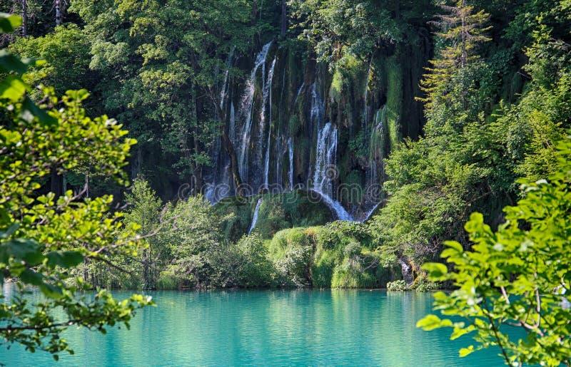 瀑布美丽的景色在Plitvice湖 水是确切和绿松石 免版税库存图片