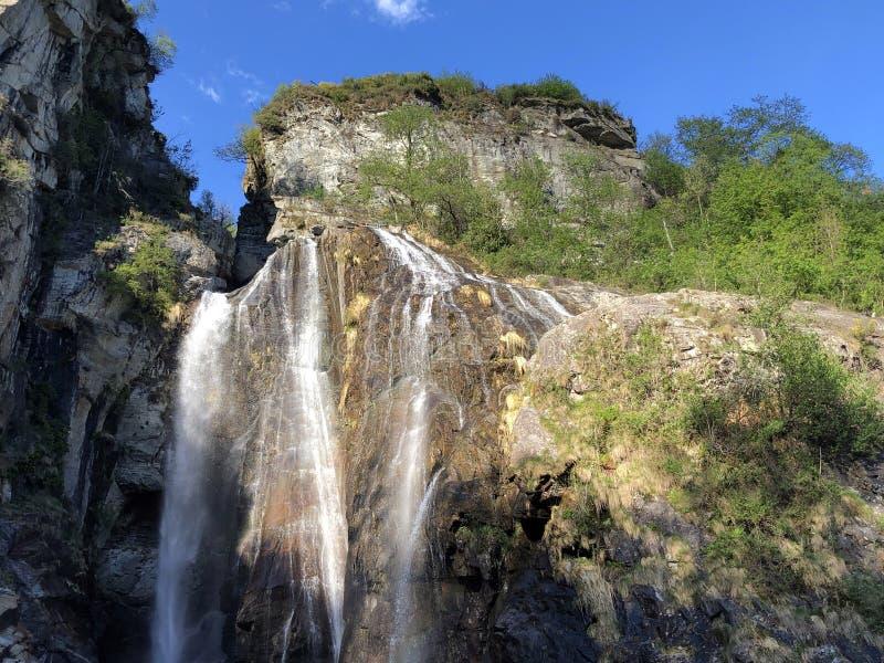 瀑布萨尔托省马贾河或Wasserfall萨尔托省马贾河马贾河谷或瓦尔马贾河或Maggiatal 库存照片