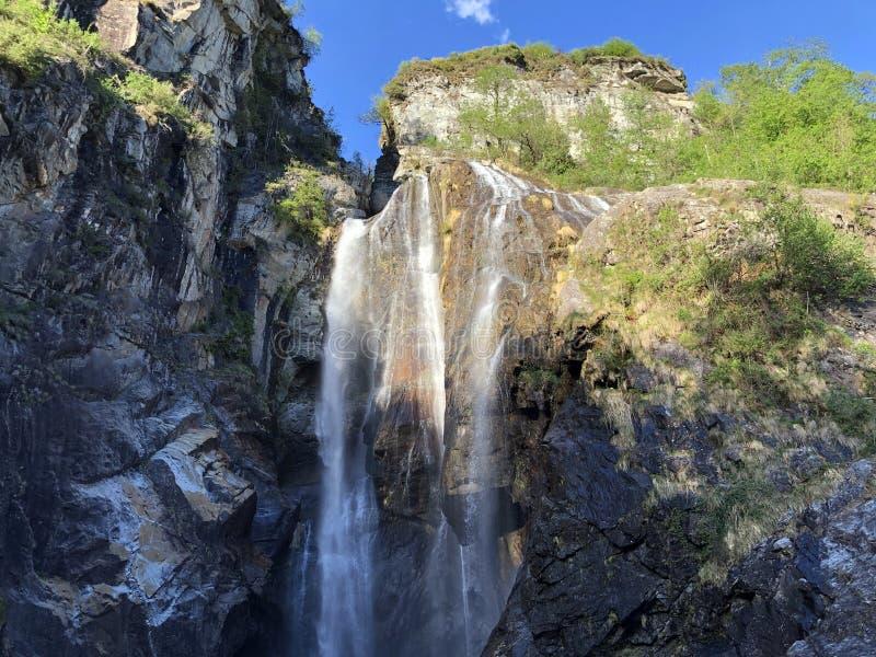 瀑布萨尔托省马贾河或Wasserfall萨尔托省马贾河马贾河谷或瓦尔马贾河或Maggiatal 免版税库存照片