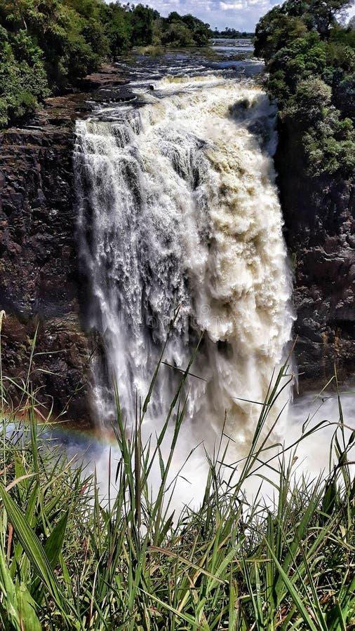 瀑布赞比亚 免版税库存照片