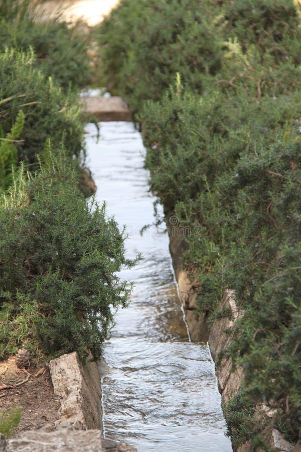 瀑布,拉马特甘Hanadiv自然公园,以色列 库存照片