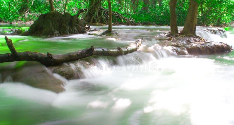 瀑布,普吉岛安达曼泰国室外摄影在雨密林林木的, 免版税库存照片
