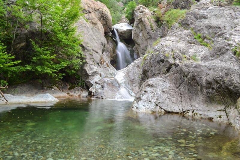 瀑布 卡洛沃,保加利亚 森林河 瀑布河 免版税图库摄影