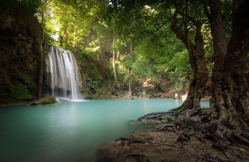 瀑布ans阳光射线和光芒通过叶子发光 库存照片