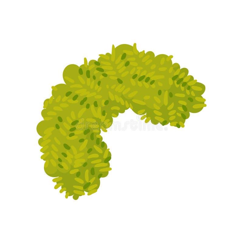灌木位于以半圆的形式 r 向量例证