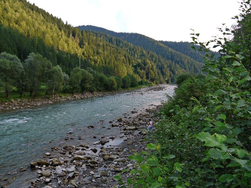 灌木和树丛林的美丽和醒目的河在庄严山的脚 库存照片