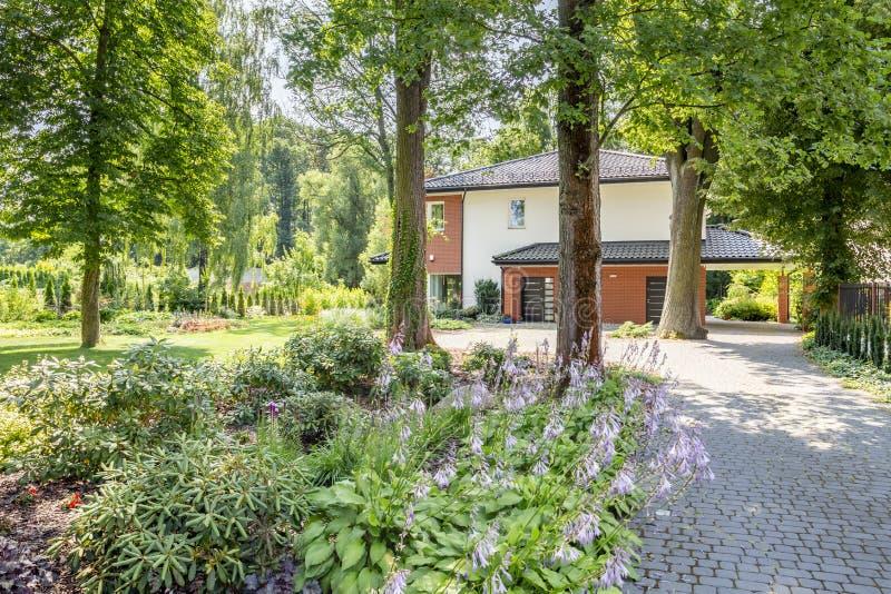 灌木特写镜头在一条路旁边的向树包围的房子 免版税库存图片