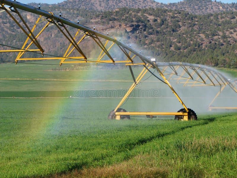 灌溉彩虹 库存照片