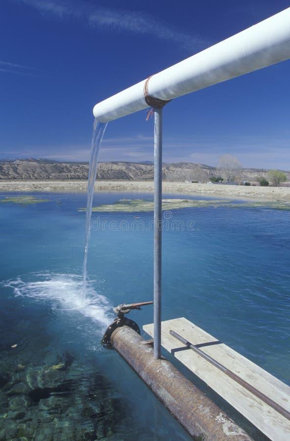 灌溉排水设备的池塘 免版税库存图片