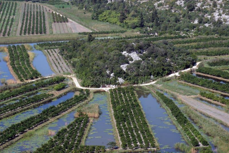 灌溉模式 库存照片