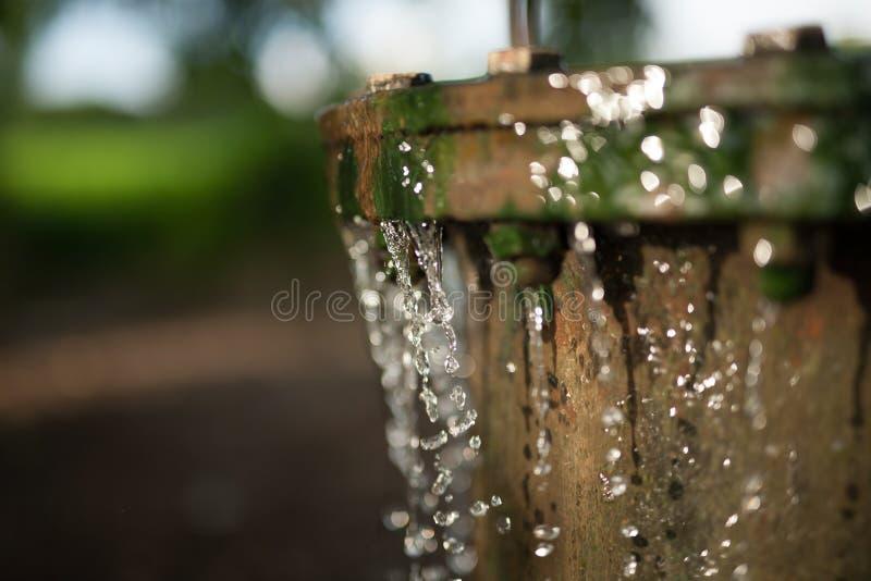 灌溉水和节水 免版税库存照片
