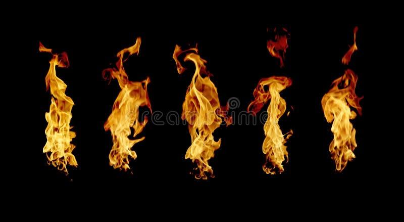 火发火焰在黑背景隔绝的收藏 免版税库存图片