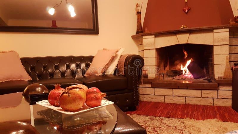 火发火焰壁炉的森林 图库摄影