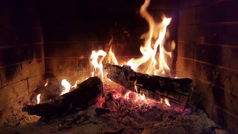 火发火焰壁炉的森林 库存照片