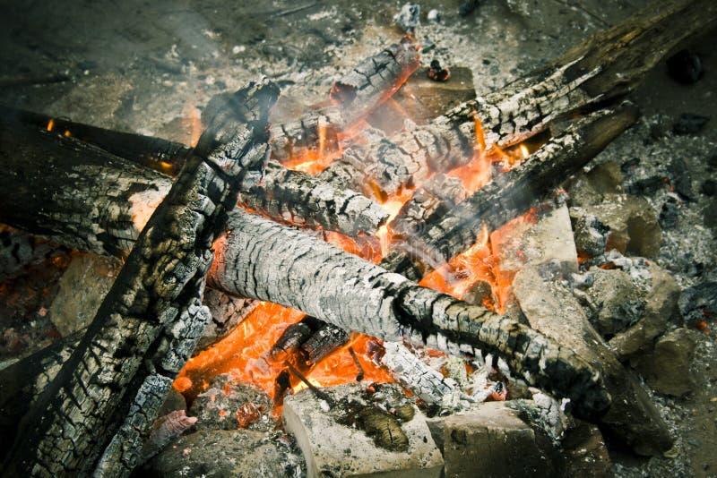 火和木头 库存图片