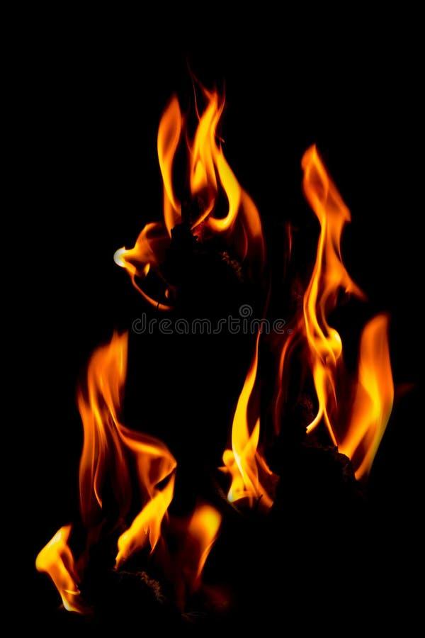 火在黑色隔绝的火焰集合隔绝了美好的背景- 免版税库存图片