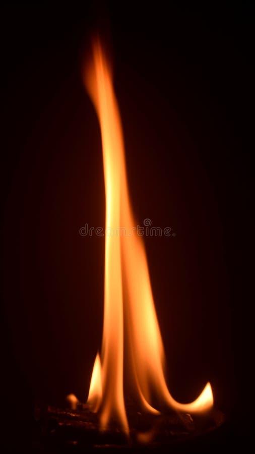 火在Loban 库存图片