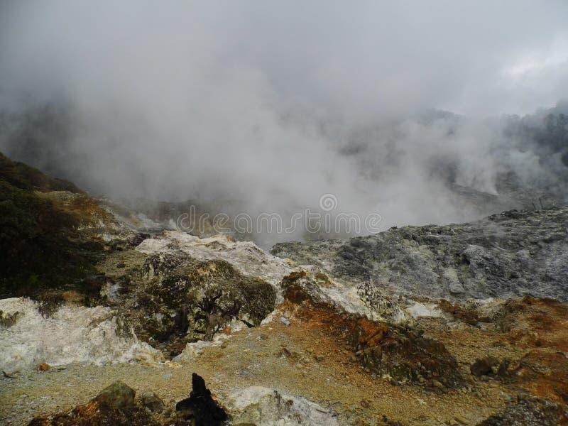 火山口茂物群女王/王后山  免版税图库摄影