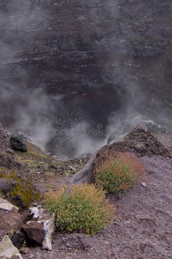 火山口vesuvius火山 免版税库存照片