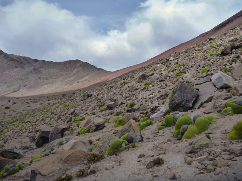火山在阿雷基帕上的nevado chachani 免版税图库摄影