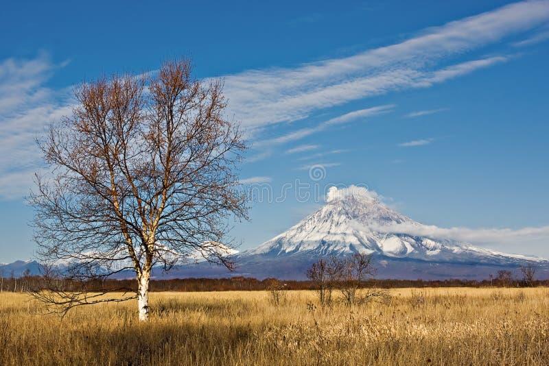 火山爆发在堪察加,火山碎屑岩的流 免版税库存照片