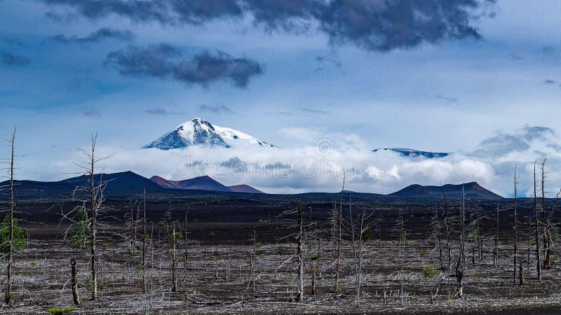 火山的看法 库存图片