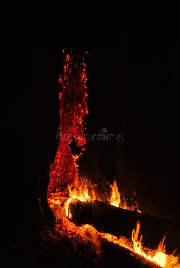 火山的野火 库存图片