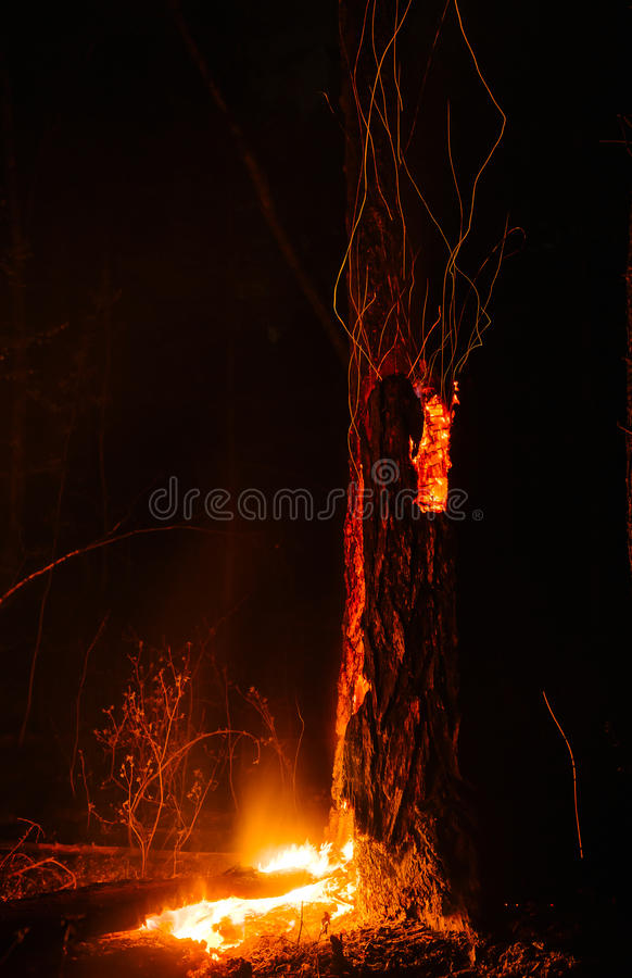 火山的野火 免版税库存照片