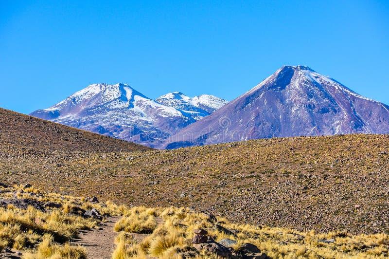 火山的风景在阿塔卡马沙漠,智利 免版税库存照片