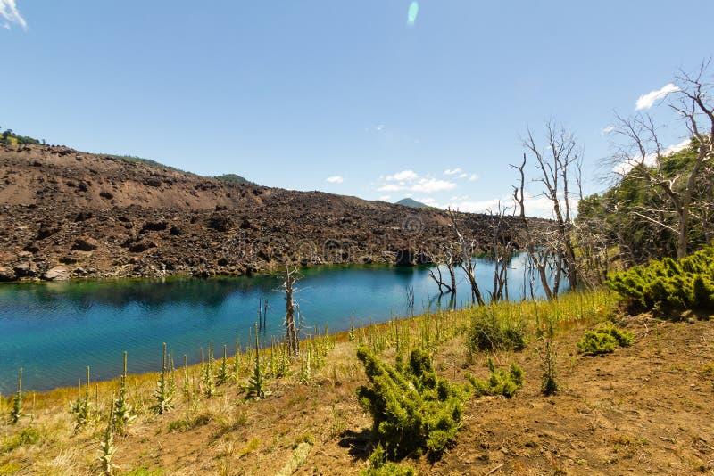 火山的风景,智利巴塔哥尼亚,智利 免版税图库摄影
