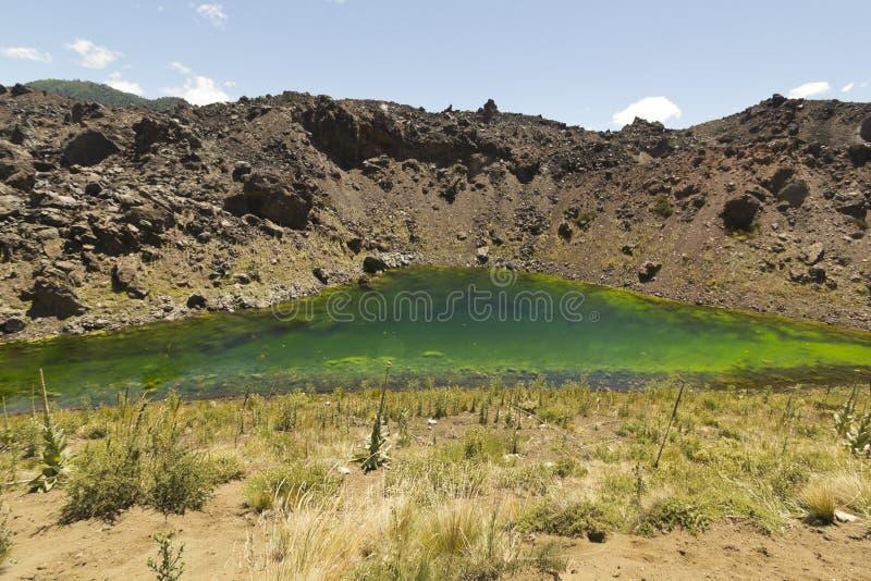 火山的风景,智利巴塔哥尼亚,智利 库存图片