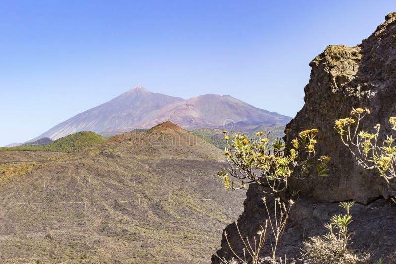 火山El泰德峰的看法,如被看见从山上面在Masca,特内里费岛,西班牙 免版税库存照片