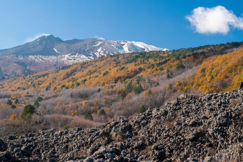 火山Etna东北侧面在晚秋天期间的 免版税库存图片